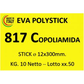 SILICON ADEZIV PROFESIONAL - 817 COPOLIAMIDA